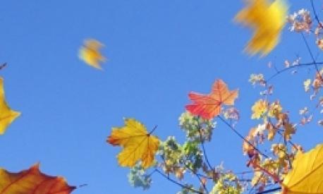 Herbstfest in Landheim
