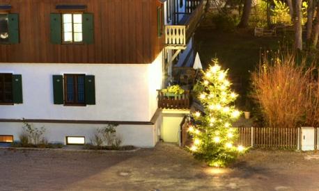 Der Weihnachtsbaum im Landheim